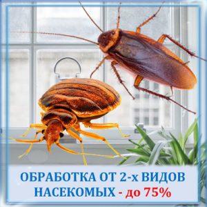 Обработка от двух видов насекомых