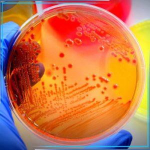 Уничтожение инфекций