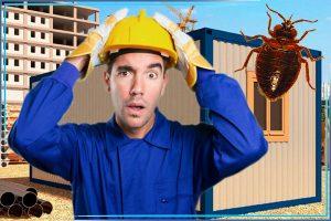 """png """"alt="""" строитель расстроен что клопы в бытовке """"/>"""