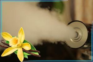 Избавиться от запаха мочи человека
