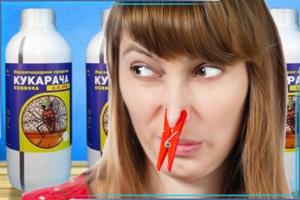 Избавиться от запаха после обработки от клопов